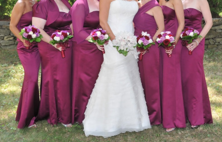 635069830e8 Bridesmaids Dresses. Picture. Purchased at David s Bridal Color Sangria